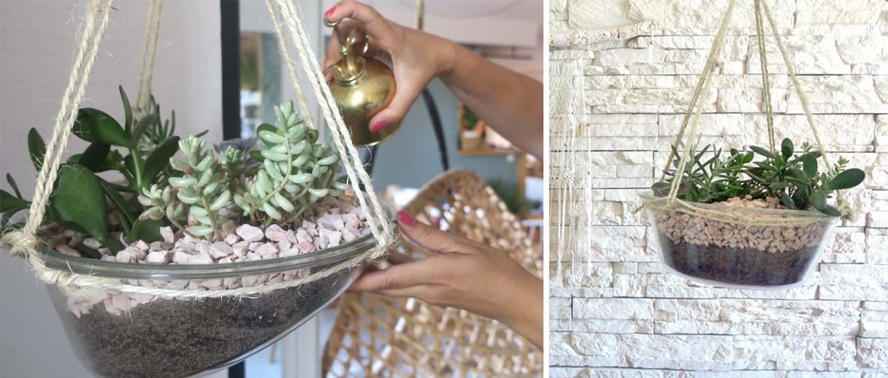 mini jardin o acheter un terrarium et comment le faire soi m me i blog ma maison beko. Black Bedroom Furniture Sets. Home Design Ideas