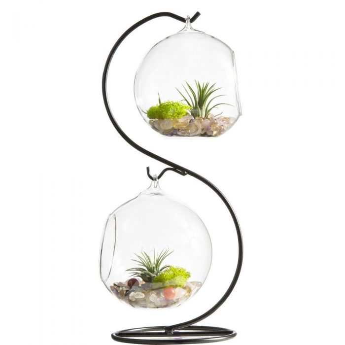 mini jardin o acheter un terrarium et comment le faire. Black Bedroom Furniture Sets. Home Design Ideas