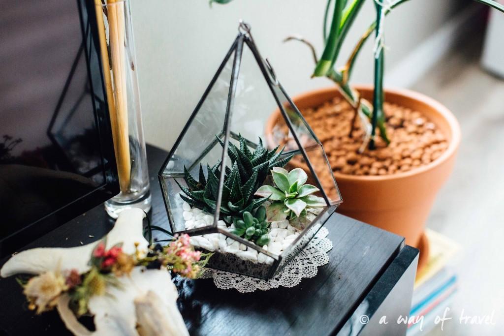 Mini Jardin Ou Acheter Un Terrarium Et Comment Le Faire Soi Meme I Blog Ma Maison Beko